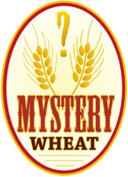 Mystery-Wheat-Beer